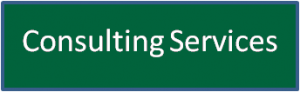 Consulting Services Button